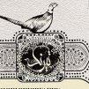 جشنواره سراسری تئاتر بومی «تیرنگ» دستخوش تغییرات اجباری کرونا